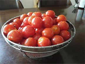 と・・・・・・トマト!