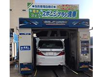 やっと洗車しました