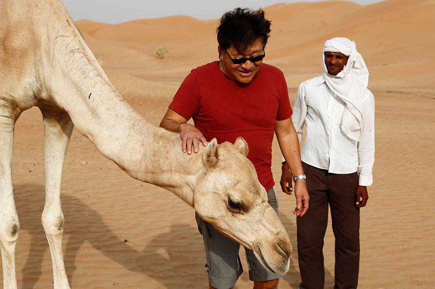 ドバイの砂漠にもラクダがいる