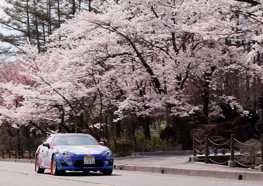 満開の桜を観ながらリエゾンを走る