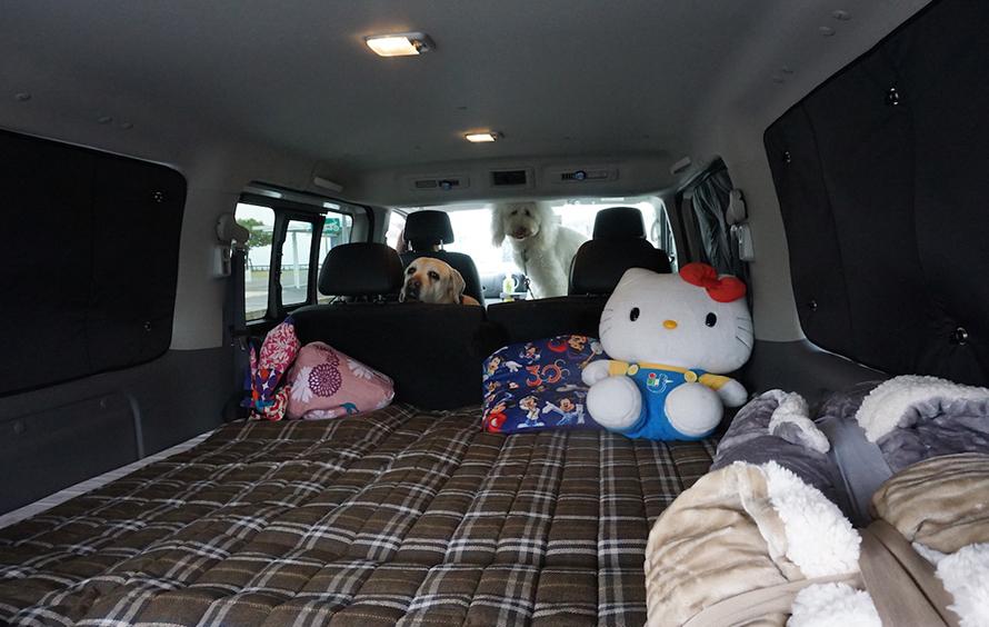 ワンボックスカーの車内の様子。ワンちゃんたちも一緒です!