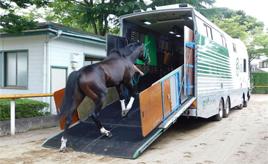 ストレスなく馬は移動できるの!?競走馬を輸送する「馬運車」を解説