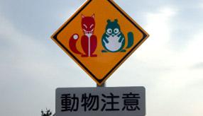 赤いきつねと緑のたぬきも! 北海道の高速道路の動物注意看板まとめ