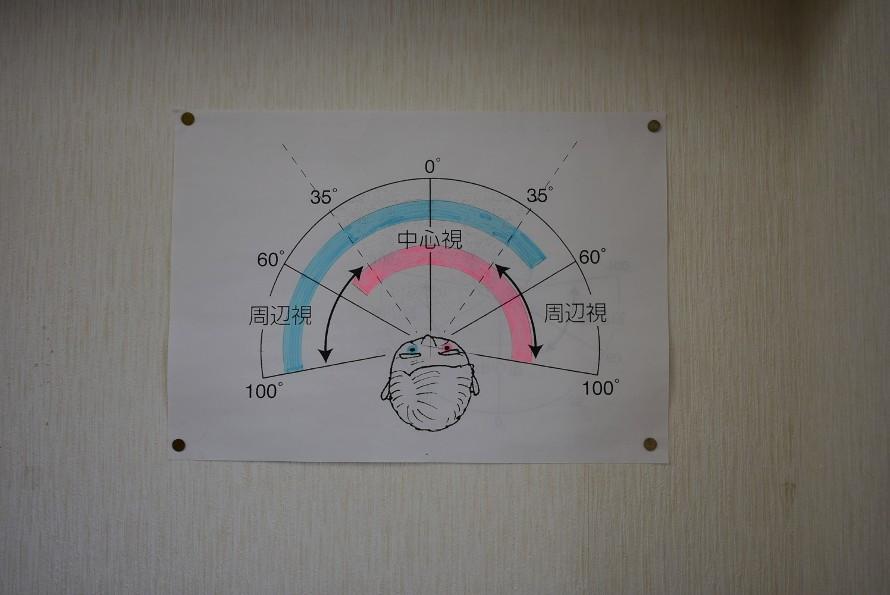 この図の100°の辺りから検査機器の白いものが動いてくる