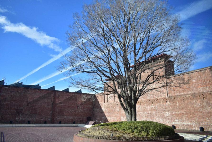 「動力の庭」と呼ばれる中庭。建設当時のままの赤レンガづくりの壁がそのまま残る。樹の後ろに見える煙突状のものは原綿をほぐす時などに出る綿ほこりを取り除いた空気を排出するための「塵突」