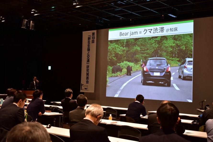 「クマ渋滞」に「ロードキル」……動物との共存について考える「野生生物と交通」研究発表会