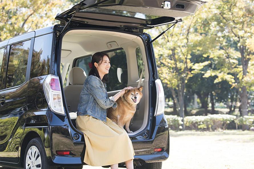 宿泊先に困ることなく、愛犬との旅を楽しむ
