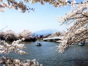 桜に囲まれた竜ヶ池をボートでのんびり周遊!臥竜公園へドライブ 長野県須坂市