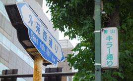 【都道の云われ(東京)】キラー・プラチナ・地中海 ユニークな愛称が多い「外苑西通り」