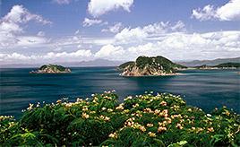 大自然や文化遺産「南さつま海道八景」の名所が多数! 鹿児島県笠沙町