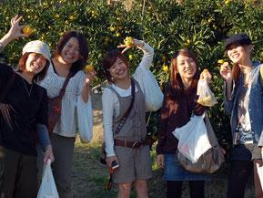 初秋の洲本市でレモン狩りやオレンジ狩りはいかが? 兵庫県洲本市