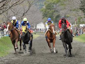 名馬の産地、綾町で迫力ある綾競馬を観戦 宮崎県綾町