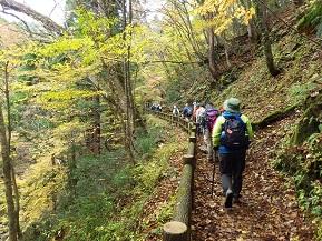 トレッキングで楽しむ紅葉の芦津渓谷 鳥取県智頭町