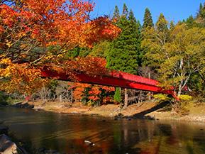 紅葉や茶房を併設したお屋敷をめぐる秋のドライブ 岡山県吉備中央町