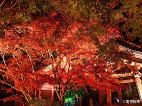 紅葉めぐりやみかん狩り、秋の南房総をドライブ 千葉県南房総市