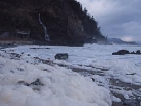 奥能登の冬の風物詩、波の花がおりなす海の花畑へドライブ  石川県珠洲市