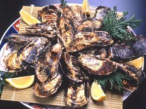 冬の味覚、絶品の「佐渡の牡蠣」を満喫するドライブ 新潟県佐渡市