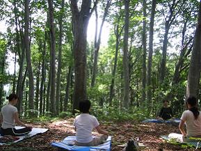 森の中でヨガ!注目のアウトドアアクティビティを体験するドライブ 長野県飯山市