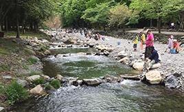 渓流釣りや魚のつかみどりが楽しめる!渓流の里へドライブ 福井県美浜町