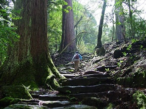 おいしい空気に思わず深呼吸!トレッキングや温泉を楽しむドライブ 熊本県水上村