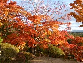 紅葉の福泉寺と童話のふるさとめがね橋へドライブ 岩手県遠野市