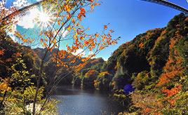 紅葉と常陸秋そばを楽しむ!秋の竜神峡へドライブ 茨城県常陸太田市