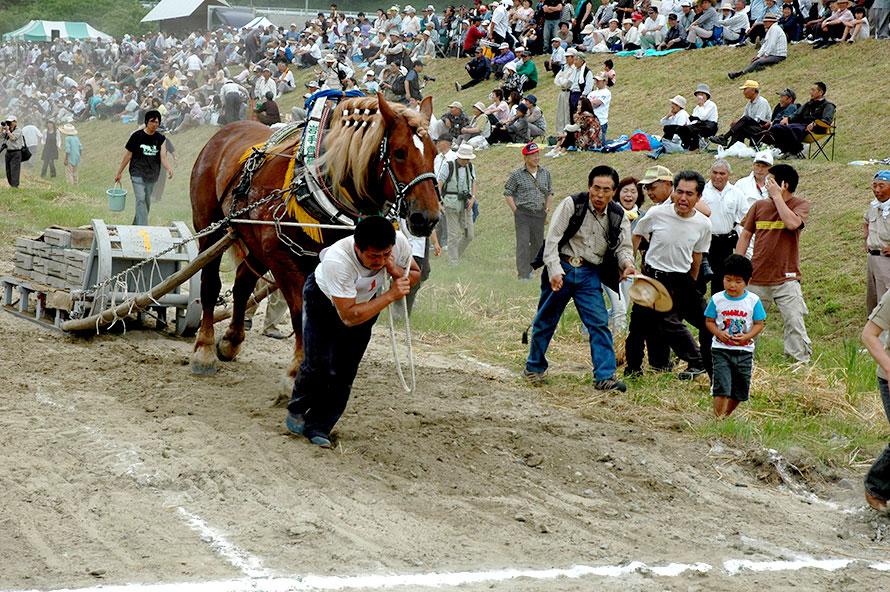 山林が多く、馬と人が山から木材を運ぶ「地駄引き(じだびき)」の歴史がある遠野ならではの催し