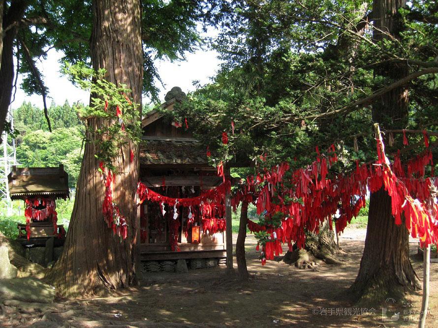 数多く結ばれている赤い布。願い事はなるべく具体的に書いたほうが叶いやすいともいわれている