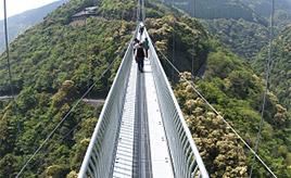 大吊橋を渡り森林浴を楽しもう!初夏の綾町へドライブ! 宮崎県綾町