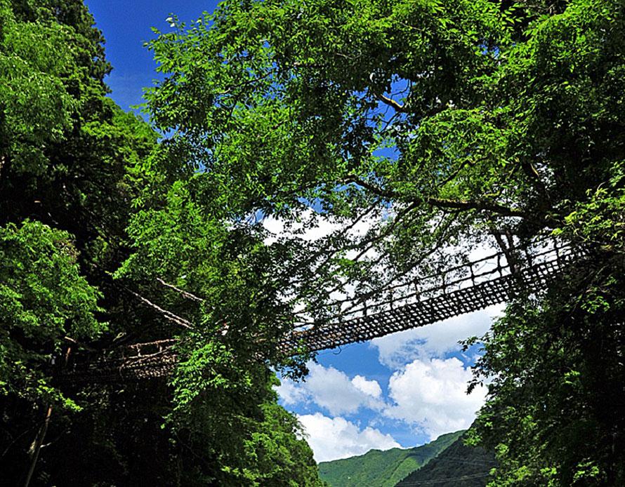 一歩進む度に揺れる「祖谷のかずら橋」はツリートレッキングとはまた別のスリル。ここからさらに車で60分ほど走ると「奥祖谷二重かずら橋」がある。