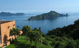 海岸線沿いのドライブは最高!高台からの絶景とランチを楽しもう 鹿児島県笠沙町