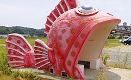 大きく口を開けたお魚バス停にドキッ!コスモス畑も楽しめるドライブへ 長崎県西海市