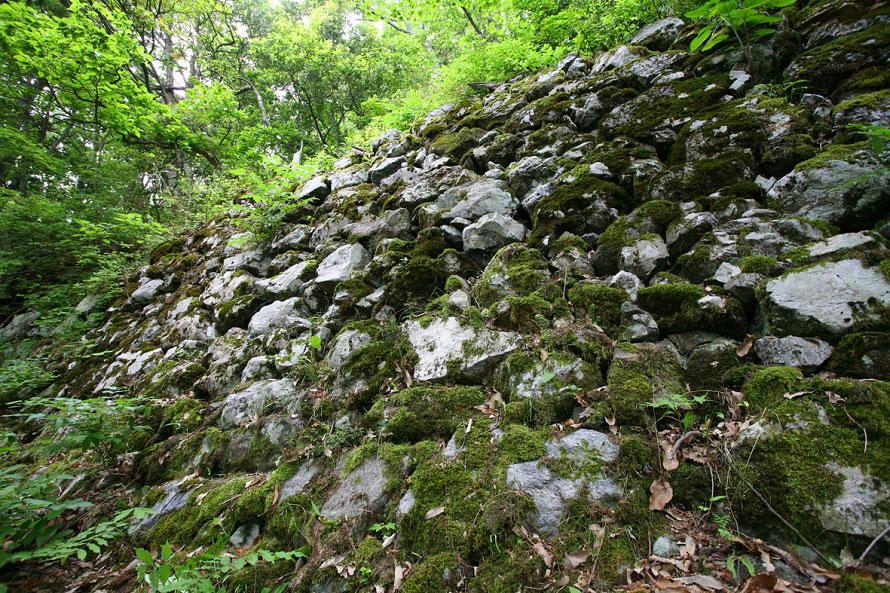 小谷城が築かれた小谷山は急峻な山。地勢が険しく、敵の侵入を防ぐのに適した戦国屈指の山城だった。