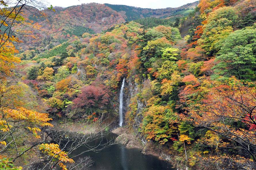 塩原を代表する滝のひとつ、回顧の滝。尾崎紅葉が書いた「金色夜叉」でも紹介された。吊橋、滝、紅葉を楽しめるスポット。
