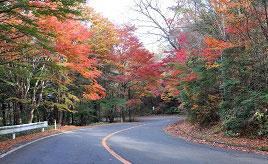 標高1000mの観光道路!紅葉が見頃になる日塩もみじラインをドライブ 栃木県那須塩原市
