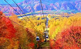 鮮やかな紅葉を行くゴンドラや大きな鍋で作る巻狩鍋!錦秋の那須へドライブ 栃木県那須塩原市