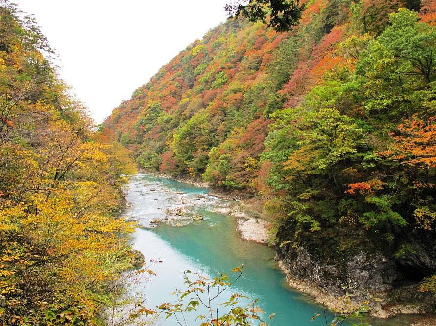 渓谷きっての名所、回顧(みかえり)の滝まで通行可能(回顧りの滝より先の遊歩道は崩落などのため現在通行不可)。