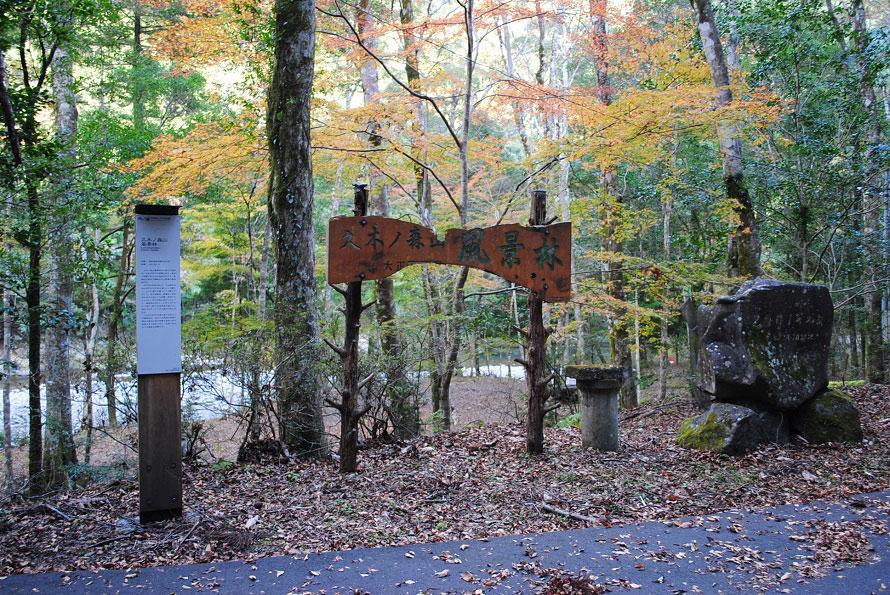 夏は渓流でのキャンプや川遊び、秋は紅葉狩りを楽しむ人が多く訪れる。