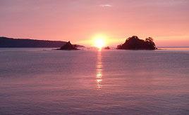 奈古漁港に沈む美しい夕日や希少な無角和牛の郷へドライブ 山口県阿武町
