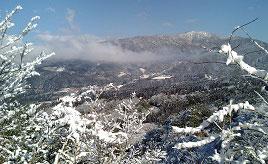 キラキラ輝く美しい樹氷!冬の市房山へドライブ  熊本県水上村