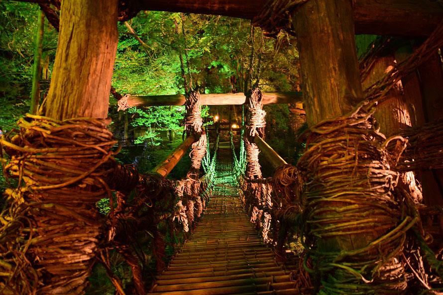 闇夜に浮かび上がるかずら橋。近くに架かる歩行者用の橋から、ライトアップされたかずら橋が見える。