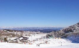 鯛とフグのいいとこどり?!「ロイヤルフィッシュ」と、スキーを楽しむ真冬のドライブ 愛知県豊根村