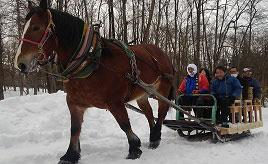 雪あそびやどべっこ祭りを開催!遠野ふるさと村へドライブ 岩手県遠野市
