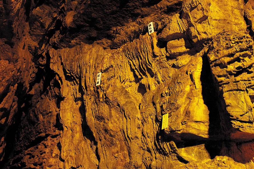 日本の鍾乳洞は2億~3億年前に隆起したものが多いが、七ツ釜鍾乳洞は約3000万年前に隆起した比較的新しい希少な鍾乳洞。