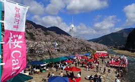 今年も開催!桜Cafeフェスティバルや森の中の素敵なカフェへドライブ 鳥取県智頭町