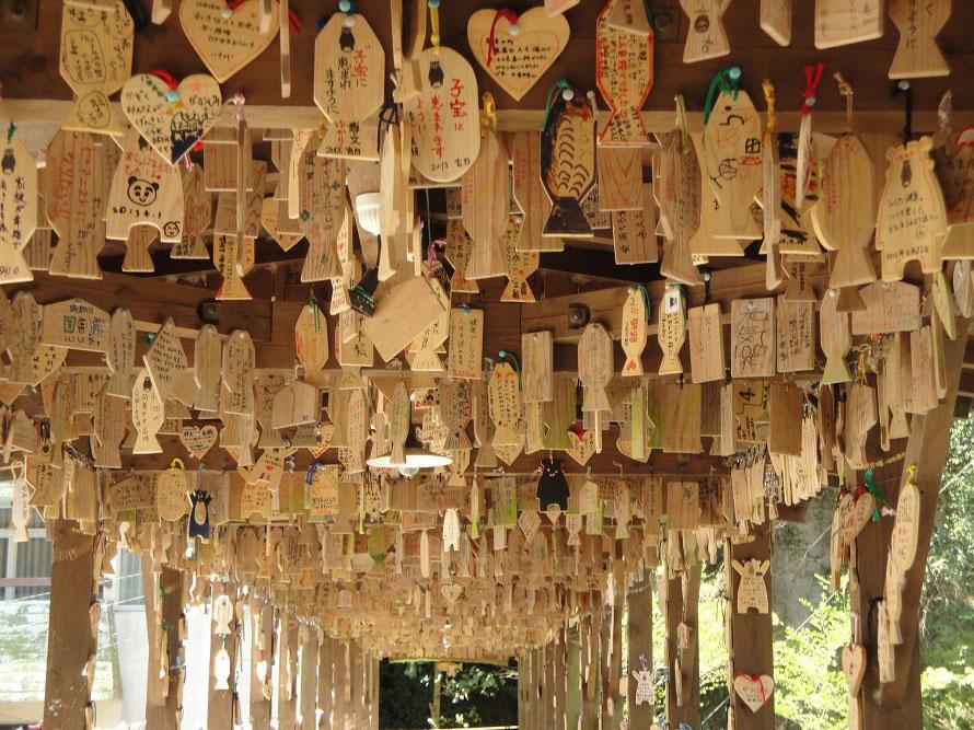 杖立川下流に架かる屋根付きの「もみじ橋」 は、願い事を書いた鯉の形の木札(絵鯉)を橋に吊り下げると願い事が叶うと評判のスポット。特に鯉=恋の願い事に効くのだとか。