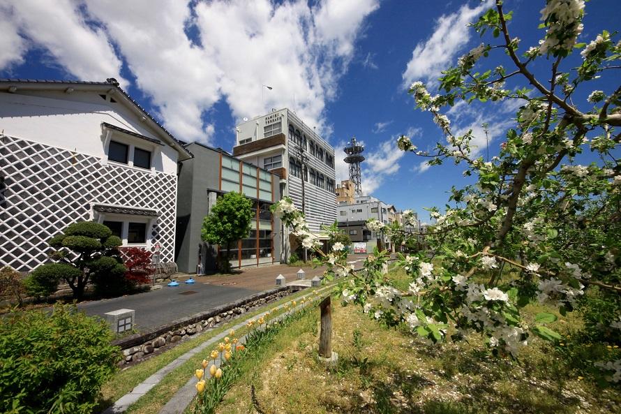 飯田市街の中心部にあり、「りんご並木」として親しまれる並木道は飯田のシンボルともいわれている。