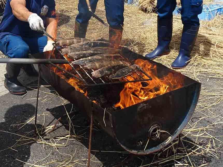カツオはその場でわら焼きのタタキにするなどして調理する。