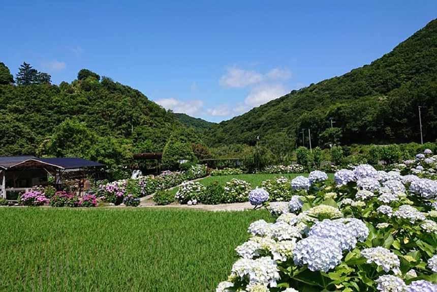 洲本市内から車で約20分とは思えないほど、自然豊かなロケーション。奥山に日本の原風景のようなのどかな光景が広がる。