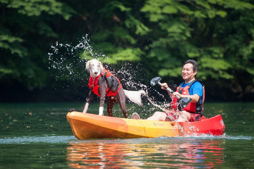 愛犬と一緒にカヌー体験。水をかぶっても、気持ちよさそう。